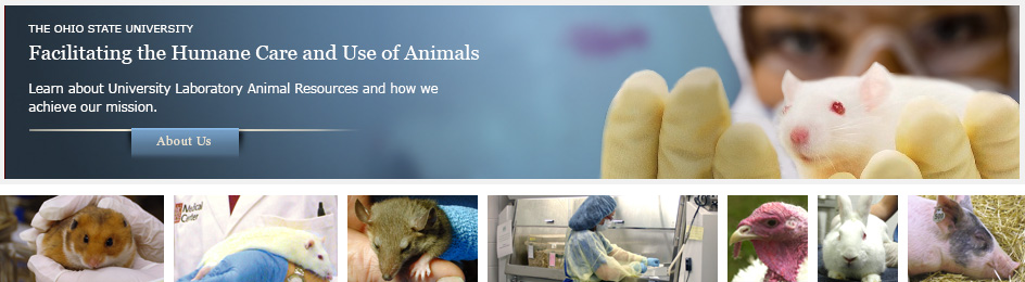 About the University Laboratory Animal Resources